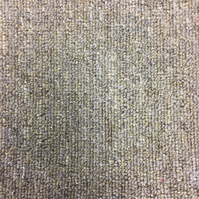 Level Loop - Light Brown Carpet (5700)