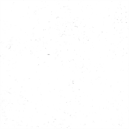 Velour Broadloom - White - per sqm