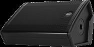 "RCF 15"" Foldback Wedge (NX15SMA)"
